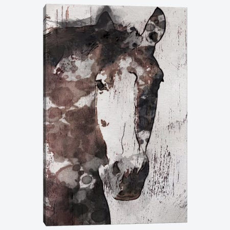 Gorgeous Horse IV Canvas Print #ORL21} by Irena Orlov Canvas Wall Art