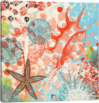 Exotic Sea Life V Canvas Art Print