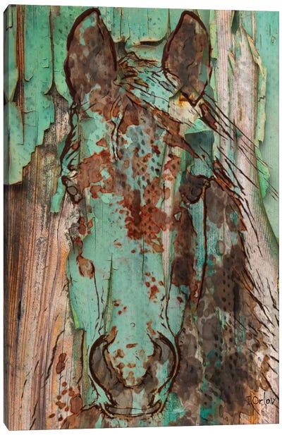 Green Horse Canvas Art Print