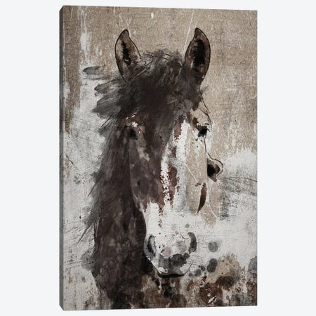 Dream Horse V Canvas Print #ORL239} by Irena Orlov Art Print