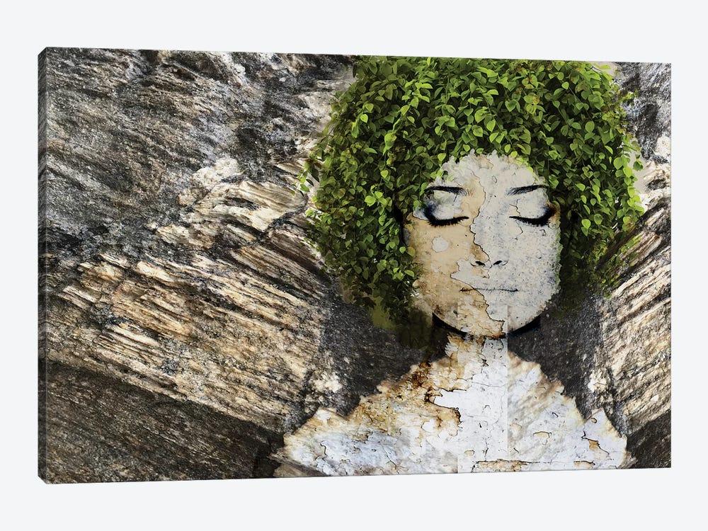 Nature III by Irena Orlov 1-piece Canvas Wall Art