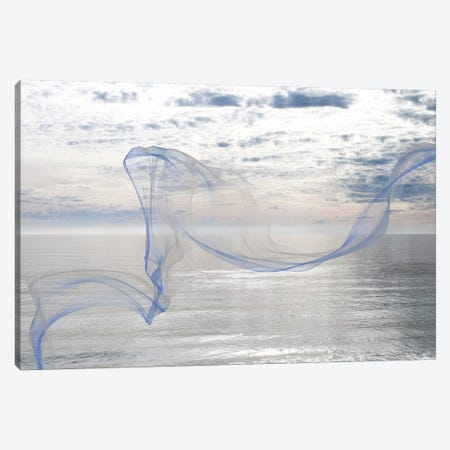 Silver Ocean Breeze 11 Canvas Print #ORL269} by Irena Orlov Canvas Wall Art