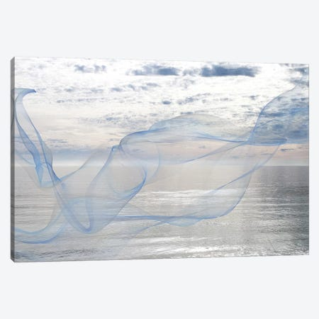 Silver Ocean Breeze 16 Canvas Print #ORL270} by Irena Orlov Canvas Art Print
