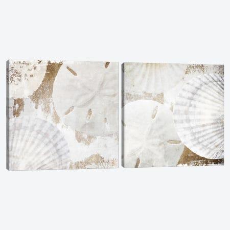 White Shells Diptych Canvas Print Set #ORL2HSET001} by Irena Orlov Canvas Artwork