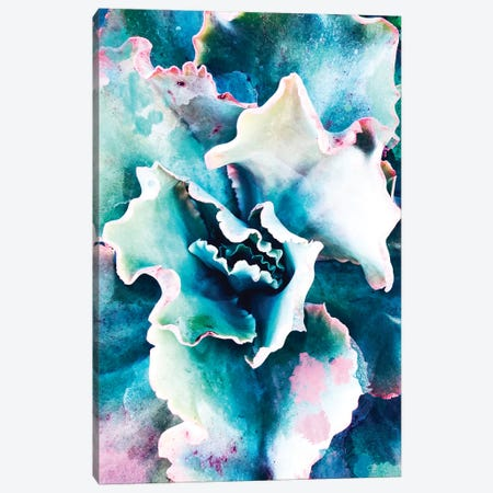 Pastel Succulent Beauty I Canvas Print #ORL302} by Irena Orlov Canvas Print