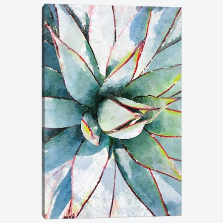 Agave In The Desert I Canvas Print #ORL320} by Irena Orlov Canvas Art Print