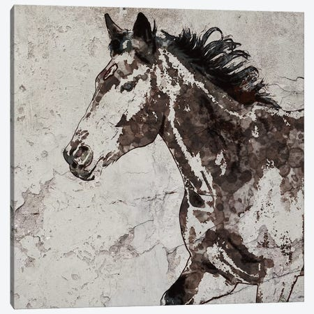 Galloping Horse III 3-Piece Canvas #ORL354} by Irena Orlov Canvas Print