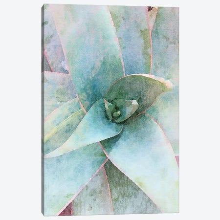 Garden Agave I Canvas Print #ORL355} by Irena Orlov Art Print