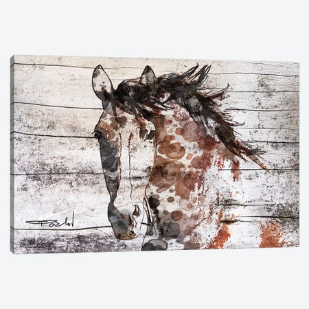 Gorgeous Bay Horse Canvas Print #ORL360} by Irena Orlov Canvas Art Print