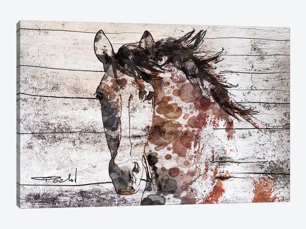 Gorgeous Bay Horse by Irena Orlov 1-piece Canvas Print