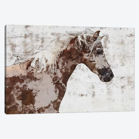 Gorgeous Brown And White Stallion 3-Piece Canvas #ORL361} by Irena Orlov Art Print
