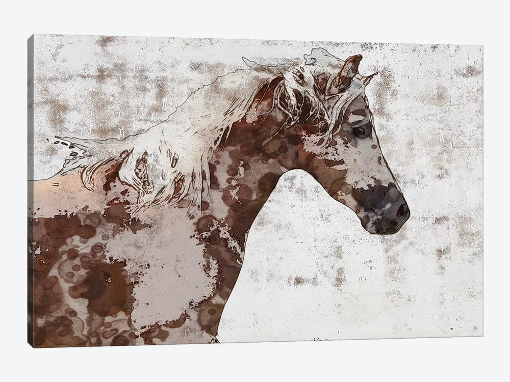 Gorgeous Brown And White Stallion by Irena Orlov 1-piece Canvas Artwork