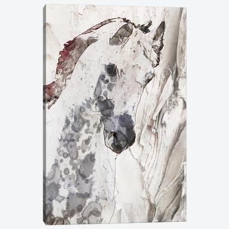 Grey White Horse Canvas Print #ORL363} by Irena Orlov Canvas Art Print