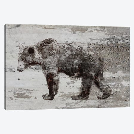 Grizzly Bear Walking 3-Piece Canvas #ORL364} by Irena Orlov Canvas Art