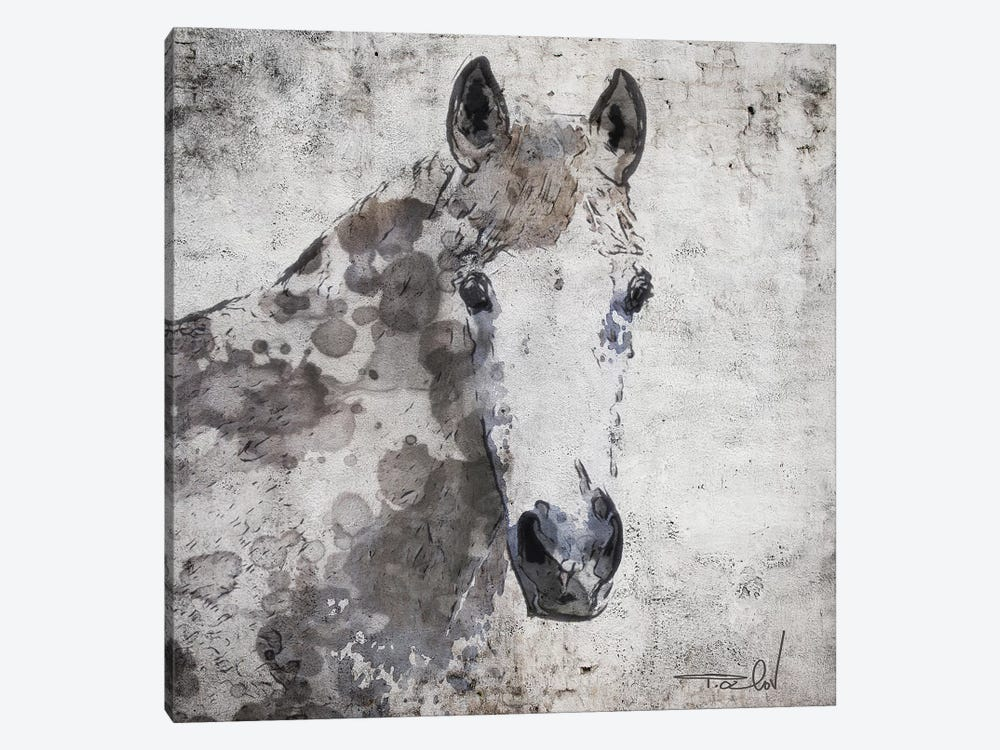 Horse Portrait by Irena Orlov 1-piece Canvas Print