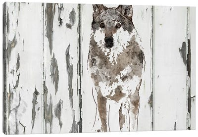 Idaho Wolf Canvas Art Print