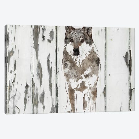 Idaho Wolf Canvas Print #ORL367} by Irena Orlov Canvas Wall Art