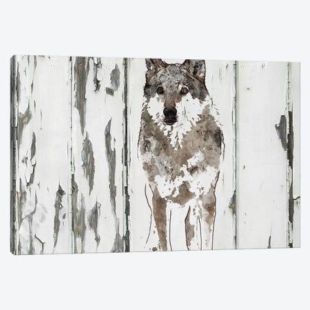 Idaho Wolf Canvas Print #ORL367} by Irena Orlov Canvas Wall Art