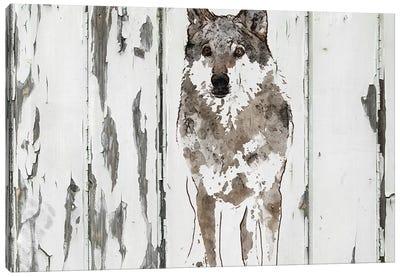 Idaho Wolf Canvas Art Print