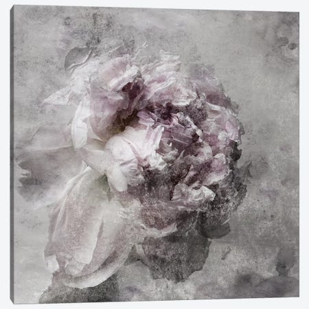 Nostalgic Peony III Canvas Print #ORL372} by Irena Orlov Canvas Art