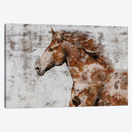 Palomino Paints II Canvas Print #ORL375} by Irena Orlov Canvas Art Print