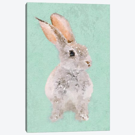 Rabbit Canvas Print #ORL382} by Irena Orlov Canvas Print
