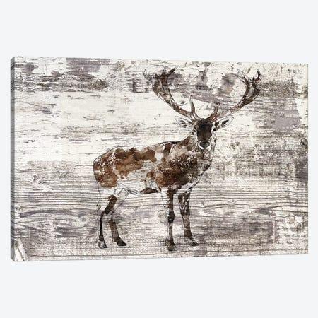 Rustic Deer II Canvas Print #ORL396} by Irena Orlov Art Print