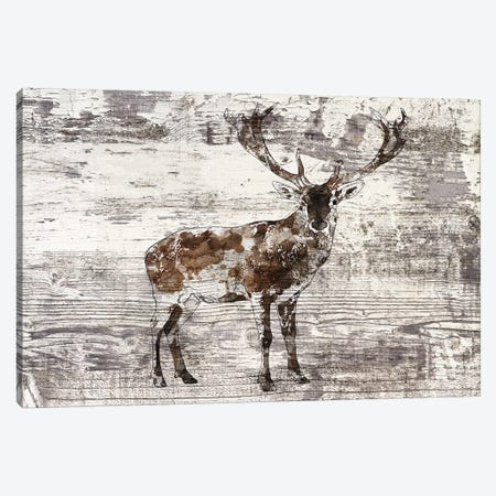 Rustic Deer II Canvas Print #ORL396} by Irena Orlov Art Print
