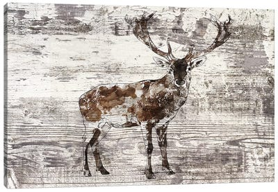 Rustic Deer II Canvas Art Print