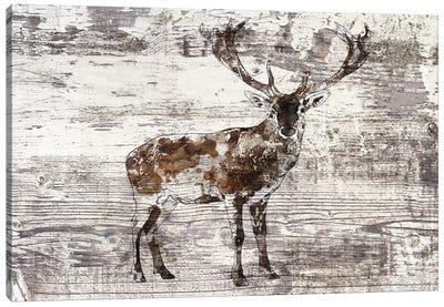 Rustic Deer II Canvas Art Print