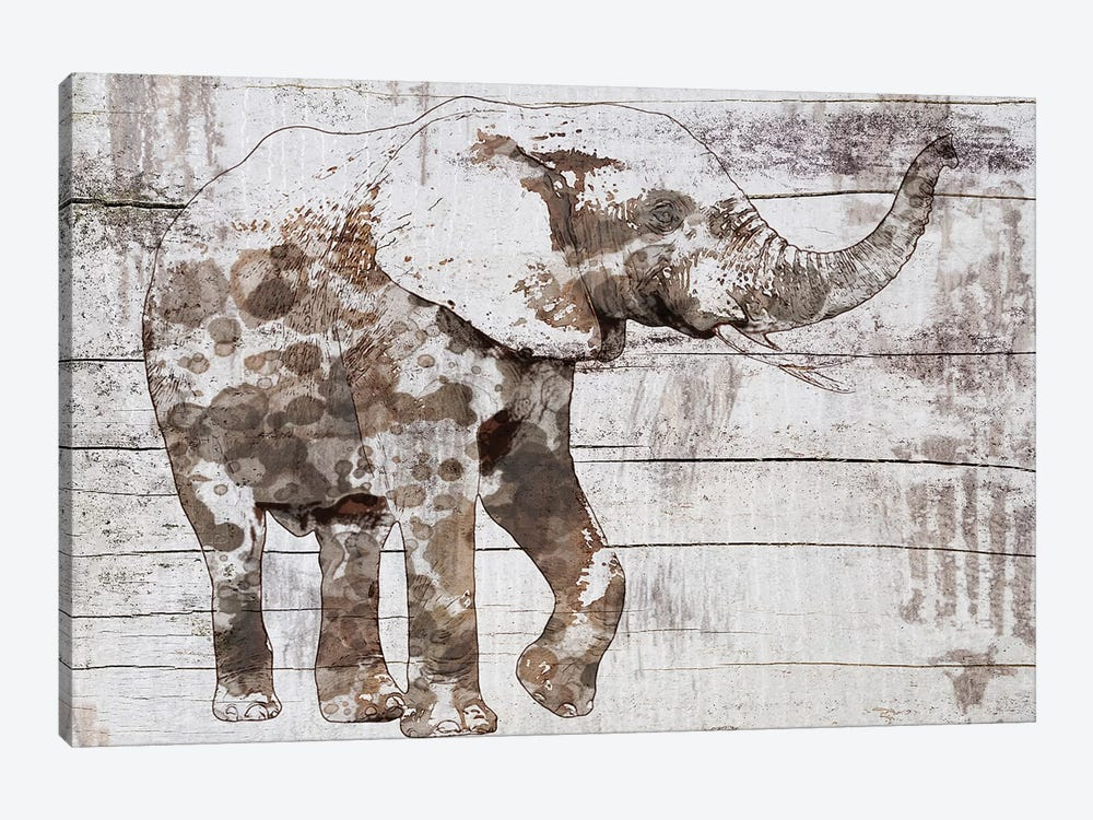 Rustic Elephant III by Irena Orlov 1-piece Canvas Wall Art