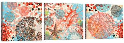 Exotic Sea Life Triptych Canvas Art Print