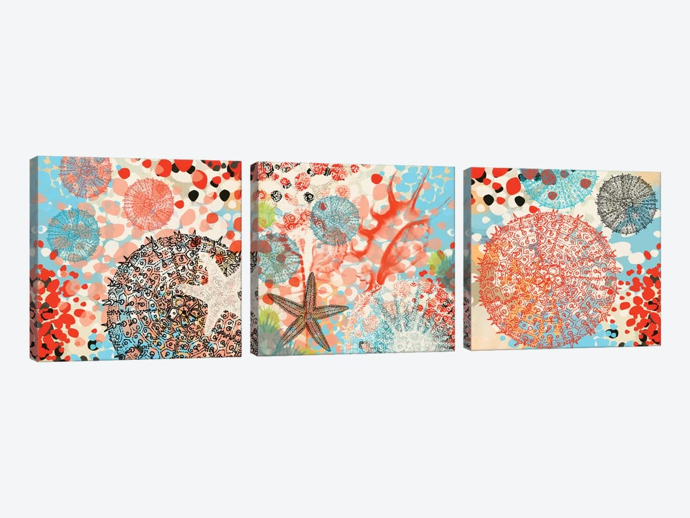 Exotic Sea Life Triptych by Irena Orlov 3-piece Canvas Art