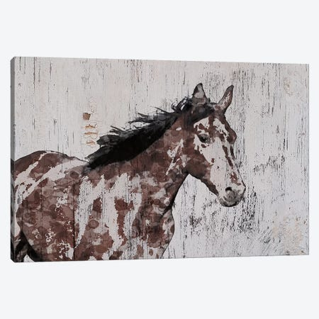 Stallion III Canvas Print #ORL407} by Irena Orlov Canvas Print