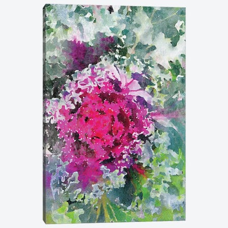 Sucullent Garden 116 Canvas Print #ORL410} by Irena Orlov Canvas Print