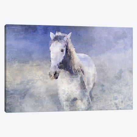 White Running Horse In The Fog Canvas Print #ORL444} by Irena Orlov Art Print