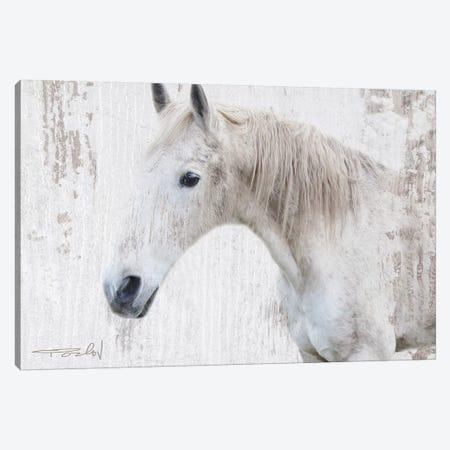 White Rustic Farmhouse Horse II 3-Piece Canvas #ORL445} by Irena Orlov Canvas Print