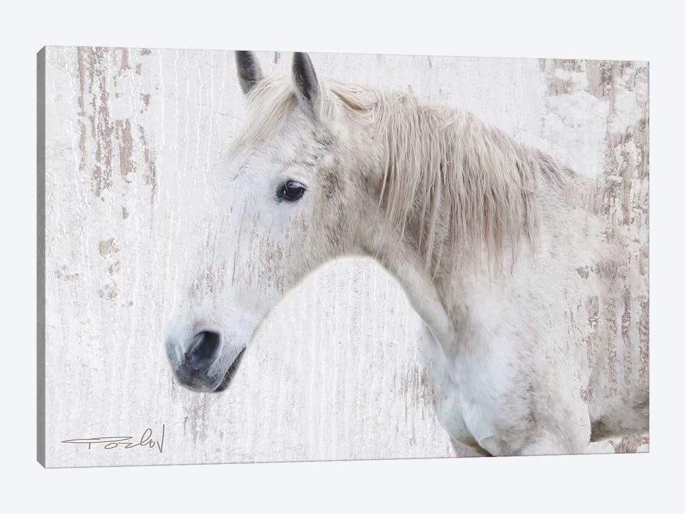 White Rustic Farmhouse Horse II by Irena Orlov 1-piece Art Print