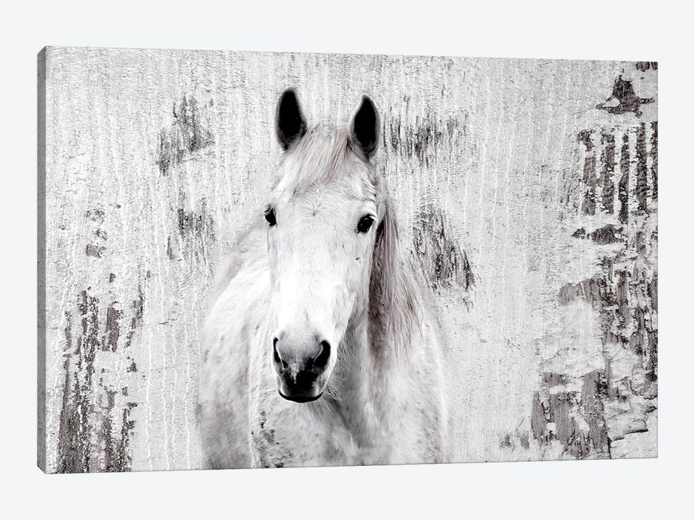 White Western Horse I by Irena Orlov 1-piece Canvas Art