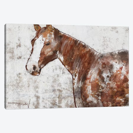 Your Horse II Canvas Print #ORL448} by Irena Orlov Canvas Artwork