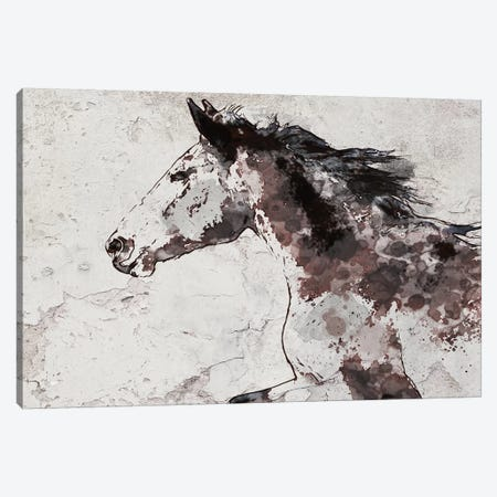 Winner Horse I 3-Piece Canvas #ORL457} by Irena Orlov Canvas Art