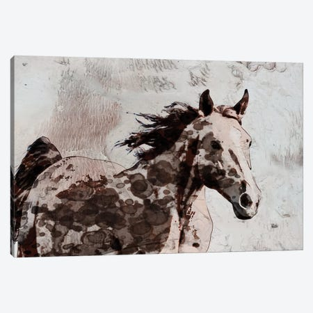 Winner Horse II 3-Piece Canvas #ORL458} by Irena Orlov Canvas Art Print