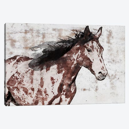 Winner Horse III 3-Piece Canvas #ORL459} by Irena Orlov Canvas Art Print