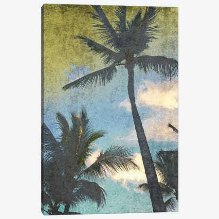 California Palms I-I Canvas Print #ORL481} by Irena Orlov Canvas Wall Art