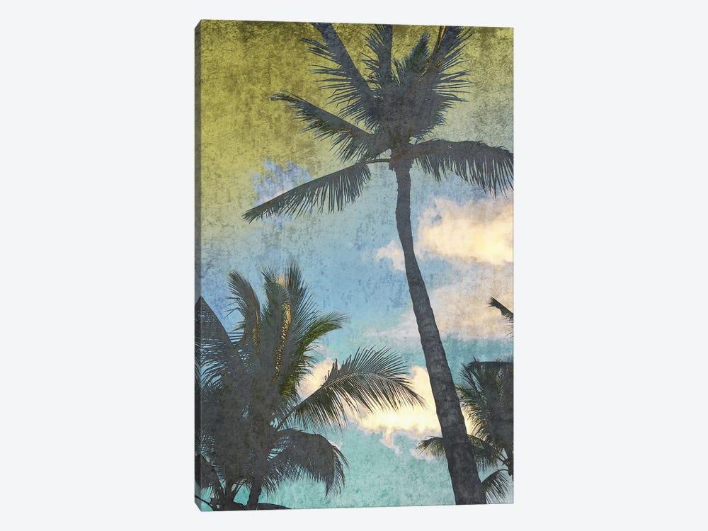 California Palms I-I by Irena Orlov 1-piece Canvas Print