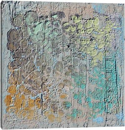 Raw Texture II Canvas Print #ORL48