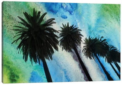 Santa Monica Palms Canvas Print #ORL49