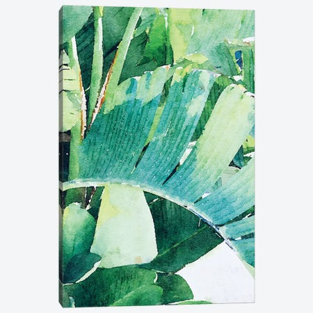 Palm Leaves In The Sun II Canvas Print #ORL523} by Irena Orlov Canvas Art Print
