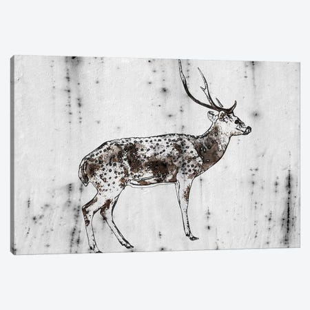 Wild Dear I 3-Piece Canvas #ORL543} by Irena Orlov Canvas Print