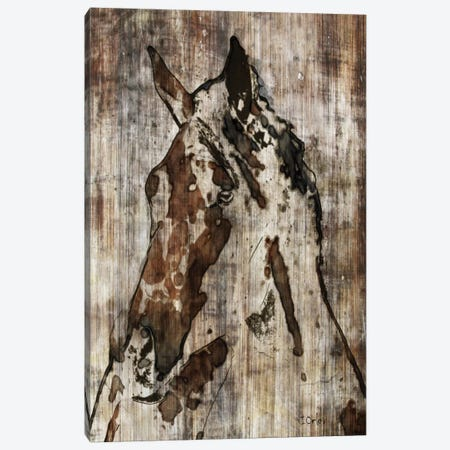 Thumper Canvas Print #ORL58} by Irena Orlov Art Print